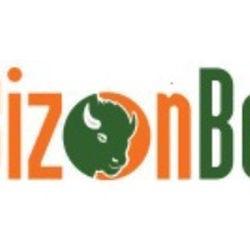 BizonBet[1]